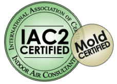 Indoor Air and Mold Inspections in Las Vegas and Henderson